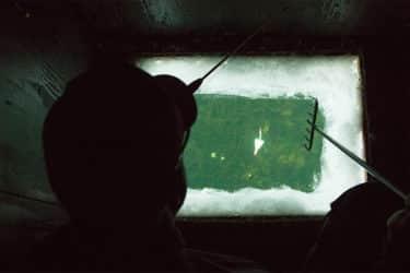 darkhouse-spearing-ice-fishing-northern-pike