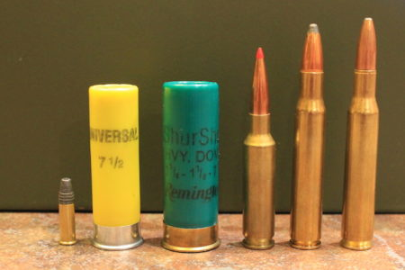 A summary of firearm cartridges