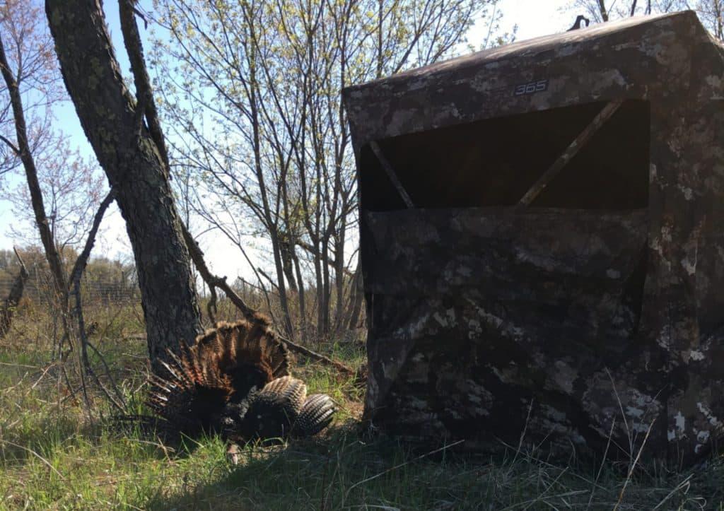 Practice and patient kills turkeys