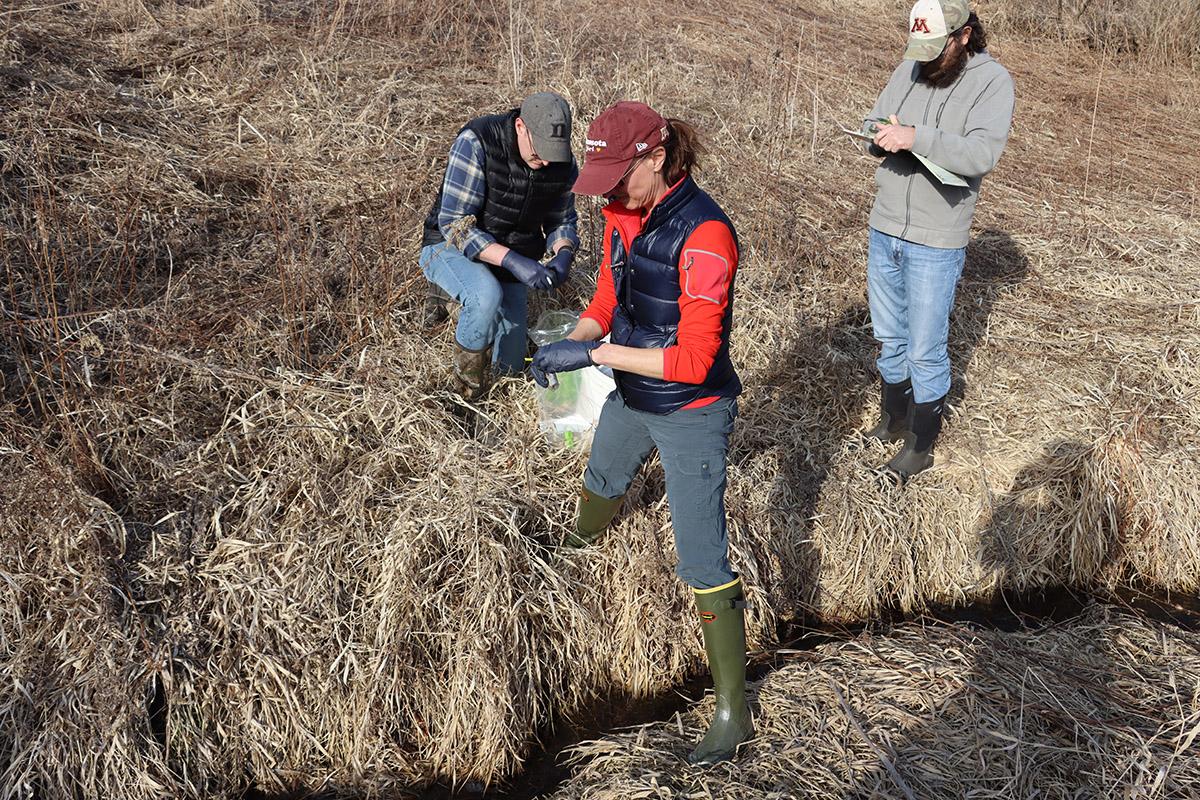 MN Pro team working on CWD Field Test